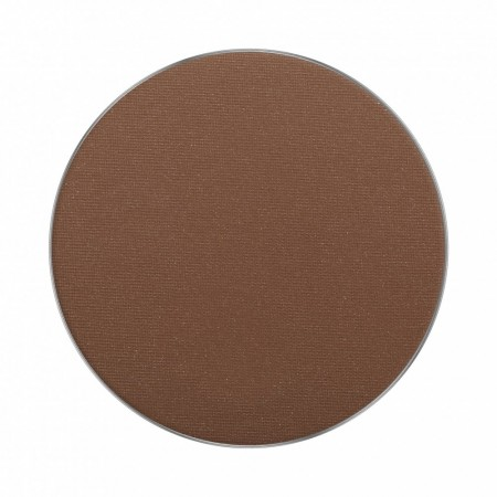 AMC Bronzing Powder 73